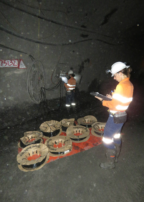 Case-study Ernest-Henry-Mining pic2 500x700px