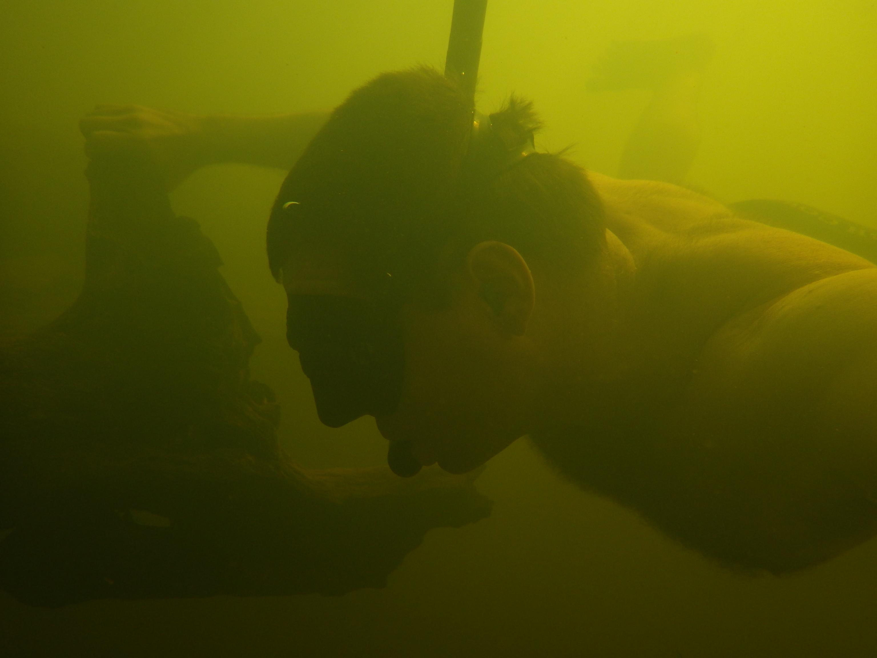 Snorkel Surveys 11