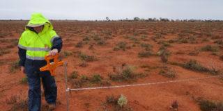 Binduli Goldfields Flora Fauna Survey 500X350Px