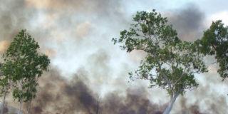 STOP cane-burning Burdekin 500x350px