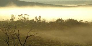 landscape-mt-gibson 500x350px