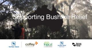 Bushfire Relief Linkedin V1 002